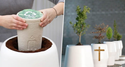 urne biodégrable